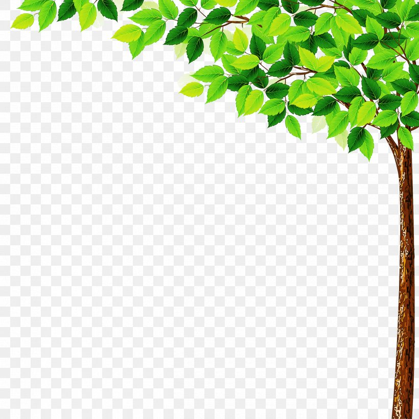 Green Leaf Tree Plant Branch, PNG, 2500x2500px, Green, Branch, Flower, Leaf, Plant Download Free