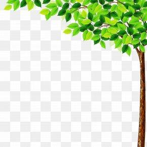 Flower Twig - Green Leaf Tree Plant Branch PNG