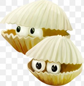 Hermit Crab Shells - Hermit Crab Seafood PNG