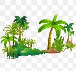 Vector Tropical Rain Forest - Tree Tropical Rainforest Euclidean Vector PNG