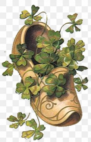 Saint Patrick's Day - Saint Patrick's Day Shamrock 17 March Clip Art PNG
