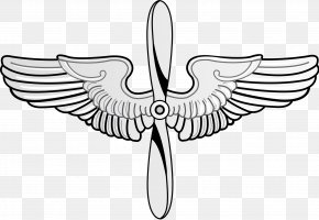 Pilot Wings Cliparts - United States Air Force Academy Prop And Wings Flight Nurse Badge PNG