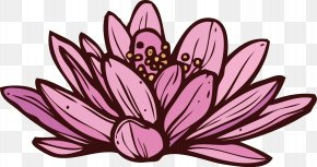 Lotus - Spa Floral Design Nelumbo Nucifera PNG