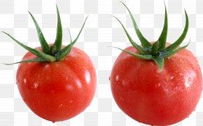 Tomato - Tomato Salsa Taco PNG