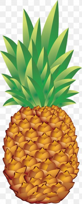 Pineapple Image Download - Juice Pineapple Fruit PNG