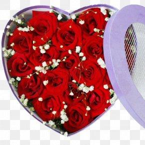 Red Roses Gift - Garden Roses Beach Rose Gift Nosegay PNG
