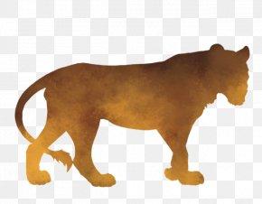 Lion - Lion Countershading Big Cat Zebra PNG