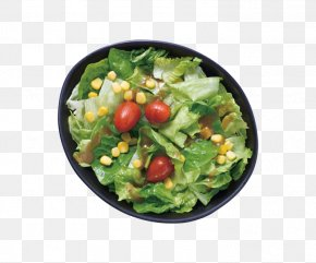 Spinach Salad Vegetarian Cuisine Spring Greens Recipe PNG
