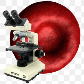 Blood Under Microscope Darkfield - Microscope Live Blood Analysis Microscopy Blood Cell PNG