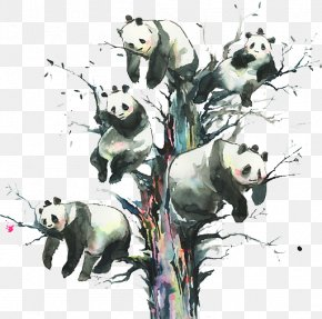 Panda - Out Of Gravity Painting Art Printmaking Illustration PNG