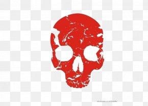 Skull - Skull Human Skeleton Bone PNG