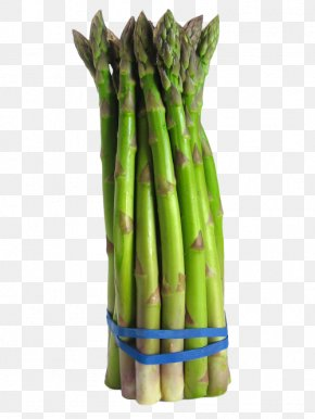 Onion Slices - Asparagus Vegetable Broccoli Food Crop Yield PNG