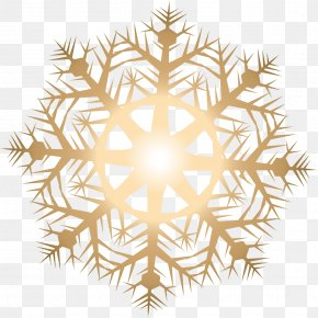 Vector Golden Snowflakes - Light Snowflake PNG