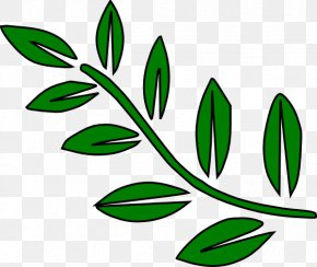 Branches Cliparts - Branch Leaf Tree Clip Art PNG