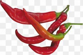 Red Chili Pepper Image - Chili Pepper Cayenne Pepper Serrano Pepper Jalapeño Bell Pepper PNG
