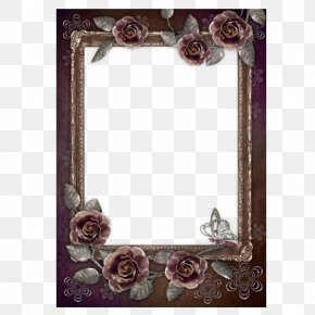 Black Rose Flower Frame - Black Rose Film Frame PNG