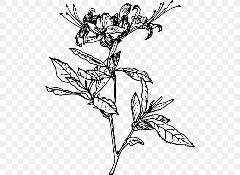 Clip Art Black and White Azaleas