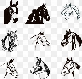 Ink Horse - Horse Silhouette Clip Art PNG