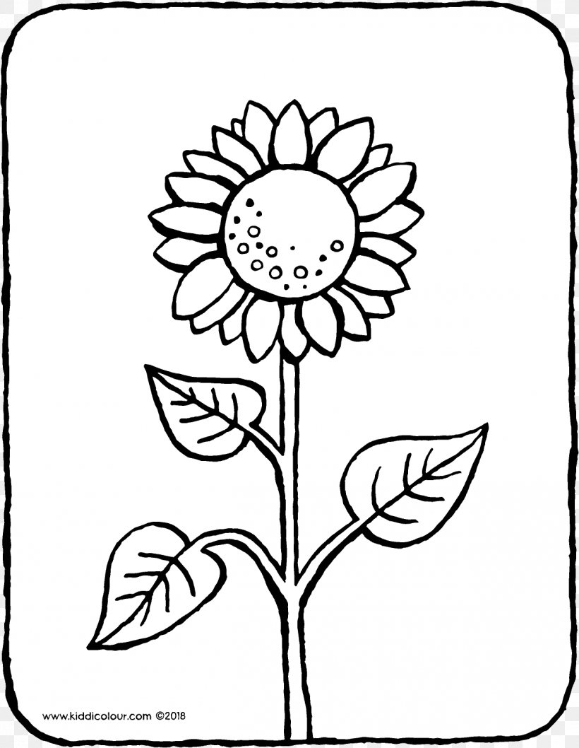 Common Sunflower Coloring Book Colouring Pages Ausmalbild ...