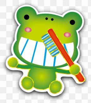 Cartoon Frog - Tree Frog Cartoon Clip Art PNG