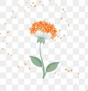 Cartoon Vector Dandelion - Flower Petal Floral Design Euclidean Vector PNG