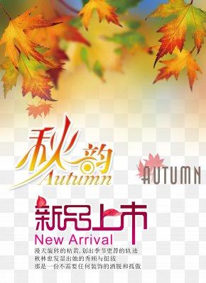 Autumn - Autumn Leaf Color Tree Wallpaper PNG