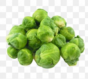 Cabbage Picture Material - Brussels Sprout Red Cabbage Broccoli Cauliflower PNG