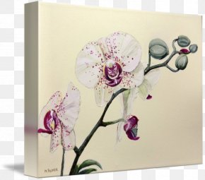 Flower - Floral Design Cut Flowers Greeting & Note Cards PNG