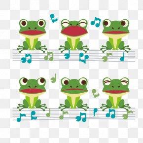 Frog - Frog Illustration PNG