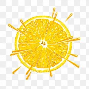 Orange - Orange Juice Fruit PNG