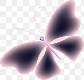 Purple Butterfly - Butterfly Close-up Wallpaper PNG