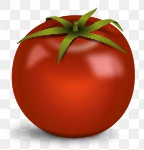 Tomato Clip Art Free - Cherry Tomato Vegetable Clip Art PNG