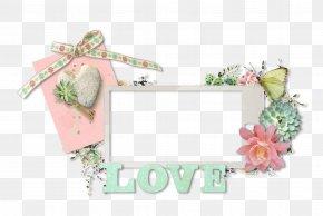 Frame Carton - Picture Frames Pink M Rectangle Font PNG