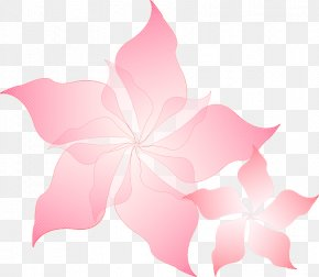Herbaceous Plant Mallow Family - Pink Flowers Background PNG