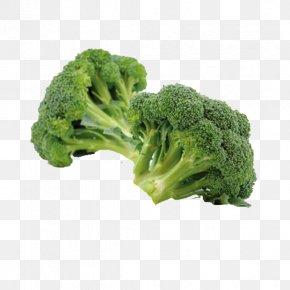 Vegetables Broccoli - Organic Food Cream Of Broccoli Soup Cruciferous Vegetables PNG