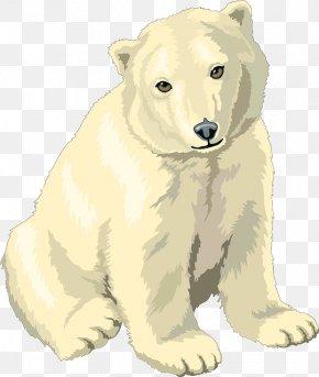 Polar White Bear - Polar Bear, Polar Bear, What Do You Hear? Clip Art PNG