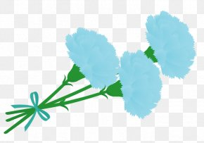 Pedicel Plant - Flowers Background PNG