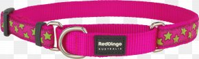 Dog Collar - Dog Collar Clothing Accessories PNG