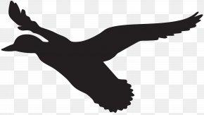 Flying Duck Silhouette Clip Art Image - Duck Flight Mallard Clip Art PNG