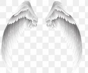 Pretty White Angel Wings - Angel Clip Art PNG