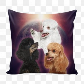 Poodle - Dog Breed Throw Pillows Pet Snout PNG