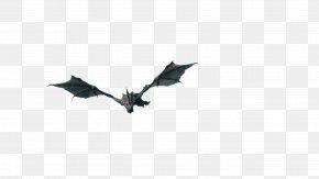 Dragon Fly - The Elder Scrolls V: Skyrim The Elder Scrolls Online Dragon Mod Video Game PNG