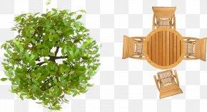 Tree Top View - Garden Furniture Landscape Architecture Landscape Design PNG