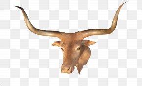 HD Longhorn - Texas Longhorn LongHorn Steakhouse PNG
