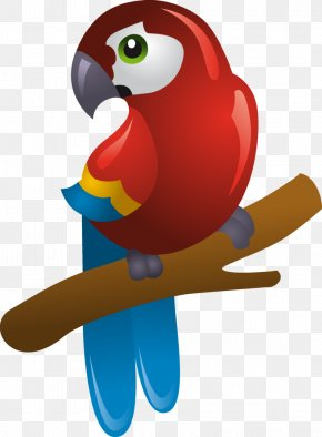 Pirate Parrot - Pirate Parrot Clip Art PNG
