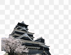 Building Cherry - Kumamoto Castle Europe Cherry Blossom Teaching English As A Second Or Foreign Language PNG