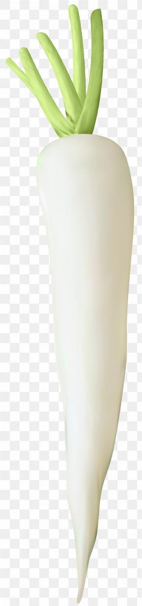 Turnip Transparent Clip Art Image - Flowerpot PNG