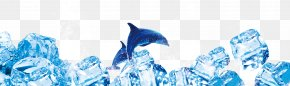 Ice Dolphin - Blue Ice Dolphin Typeface PNG