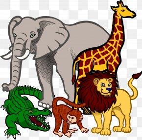 Rhino - Fauna Of Africa Baby Jungle Animals Clip Art PNG