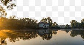 Beautiful Morning Lake - Photography Download Wallpaper PNG